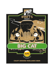 BIG-CAT-small